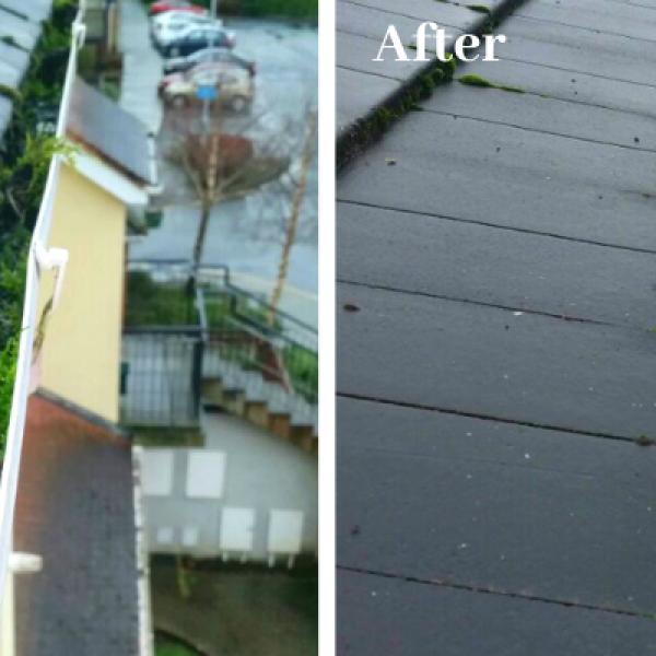 Gutter Cleaning / Repairs Dublin Ireland